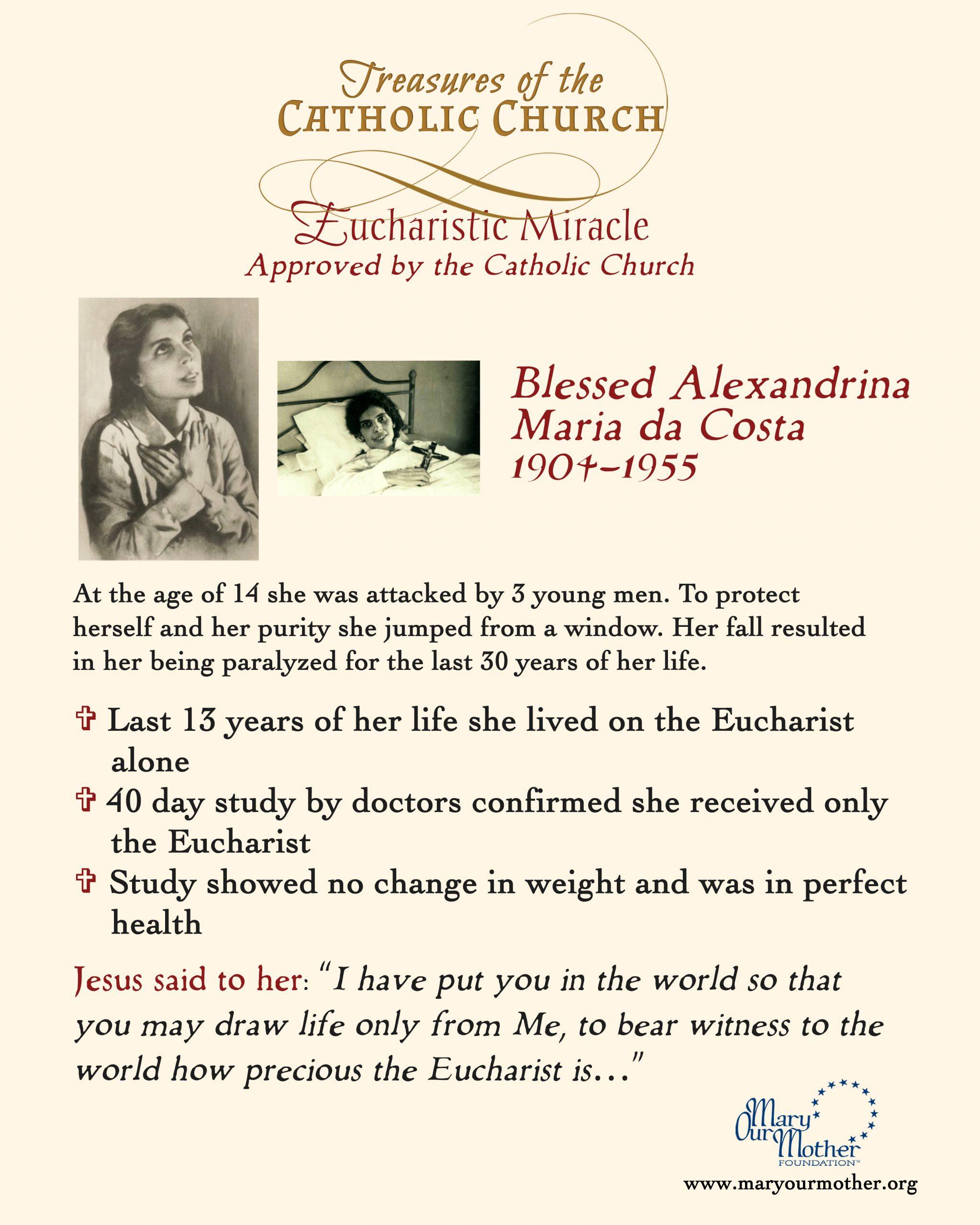 Alexandria Phone Flyer