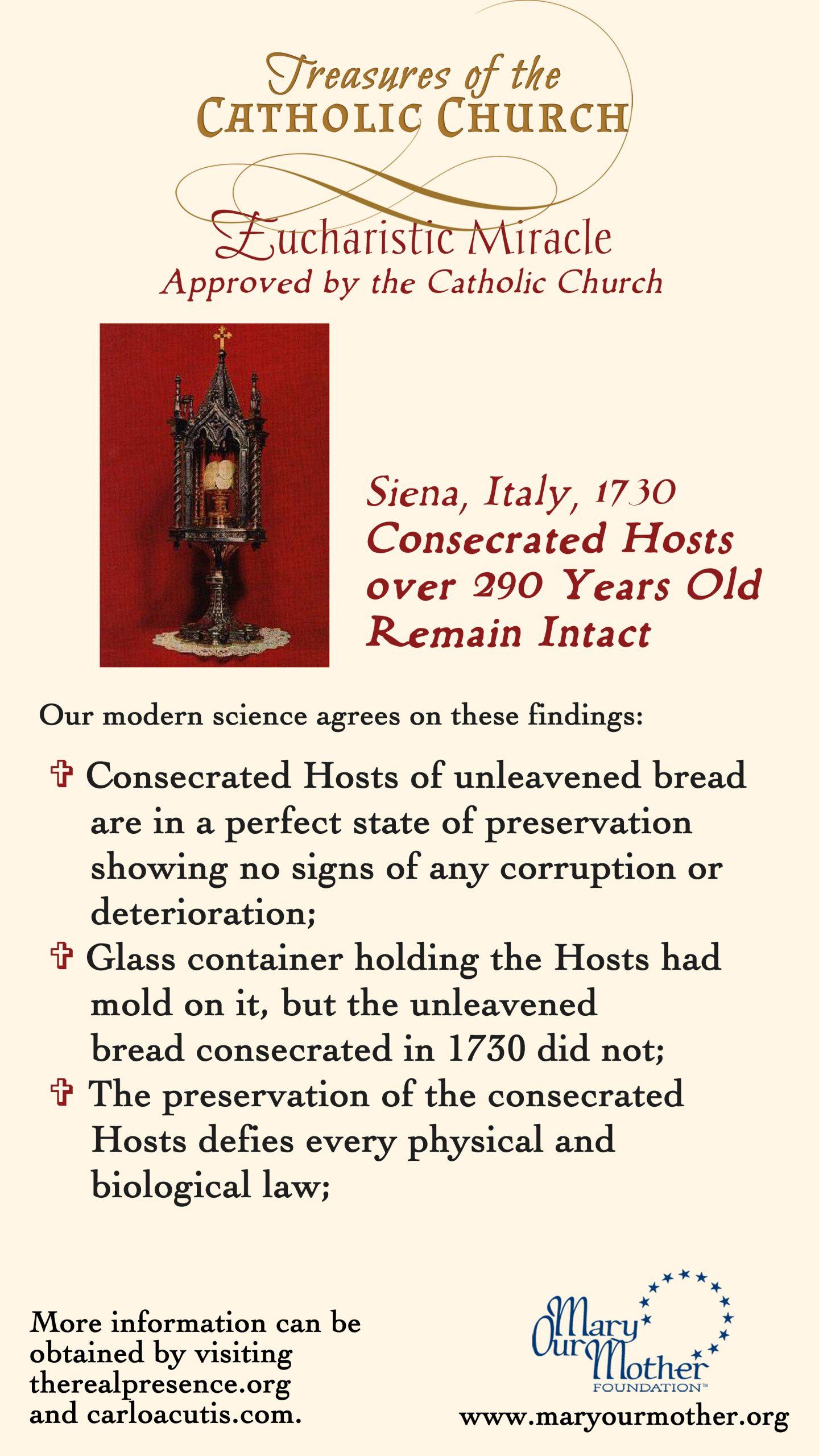 Siena PHONE Flyer